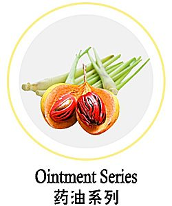 Ointment Series 药油系列